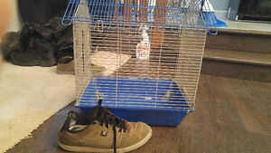 hamster gerbil rat mouse cage cages