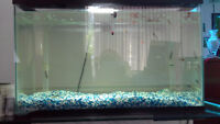 33 Gallons Fish Tank with Guppies and Accessories