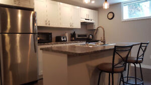 Beautiful All Inclusive 2 Bdrm Apt with A/C, Laundry, Dishwasher