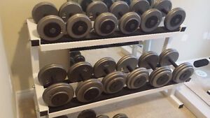 Dumbbell set 20-60 lbs with rack. Priced to S E L L !!!