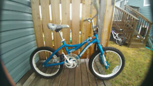 """Girl's bike with 18"""" tires"""
