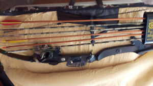 Left Handed Bear Compound Bow and case