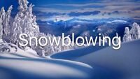 Offering Snow Blowing and Shovelling