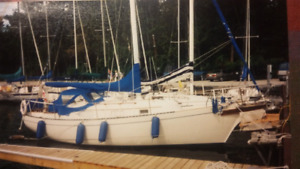 1981 Bayfield Sailboat Excellent Condition