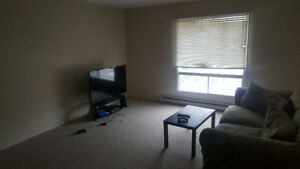 Room for rent. Looking for a roommate in a 2 bedroom apartment
