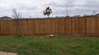 Fence Repair And Concrete Plug Pulling
