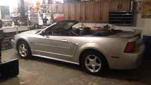 2004 Mustang Convertible  v6 auto  NO TEST DRIVER'S