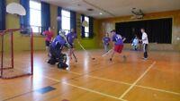 Joueurs de hockey balle recherché Dans Vaudreuil-Soulanges