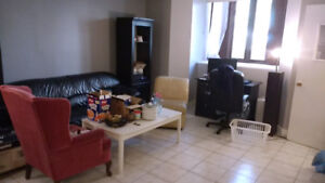 4 1/2 2 Bedroom Apartment for rent in the heart of Mcgill Ghetto
