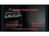 Valeting service, we come to you spare spaces after 1 Saturday and free spaces sunday