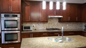 Kitchen Renovation Sale Kitchen Cabinets and Appliances Must Go