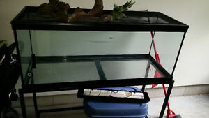 70 gal tank used for bearded dragon