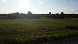 5 Acre Lot - Timmins