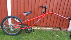 Tag Along mountain bike in good condition