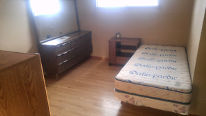 Roommate in Haysboro for March 1st or ASAP, FREE TILL MARCH 1!!!