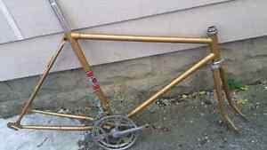 Nice Vintage 10/12 speed Road Bike Frame