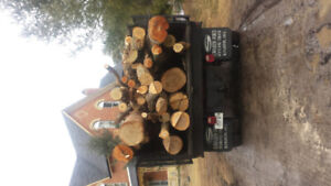 Premium Firewood Logs Delivery