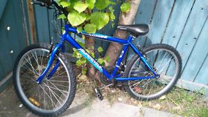 Bike 16 inch