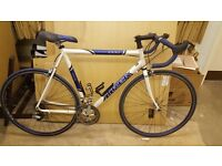 TREK Road Bike - Blue and White