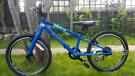 "Wiggins Chartres 20""wheel 2020 kids bike."