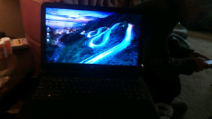 Hp AMD 6010 laptop for sale