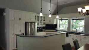 Solid Wood Kitchen Cabinets, Island, and Countertop