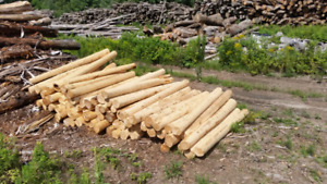 Cedar Peeled Posts ( competitive prices)
