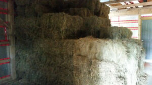 Small square bales of 2017 Hay for sale