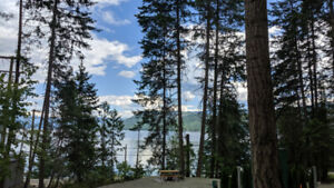 RV lot for rent at new Shuswap RV Resort on the lake in Celista