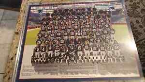 New England Patriots portraits signed 2005  Cambridge Kitchener Area image 1