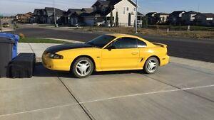 1994 Mustang GT 5.0l