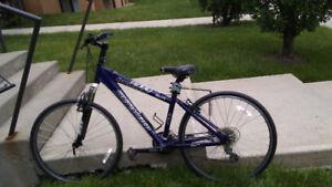 24 speed Hardrock Specialized Mountain Bike / Vélo de montagne h