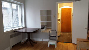Renovated 1Bdr, McGill Ghetto, available May 1st, Heated