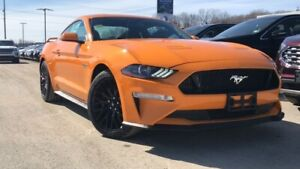 2019 Ford Mustang GT 5.0L V8 300A