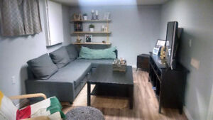 Two-Bedroom Basement Apartment for Sublet (May-August)
