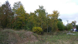 HERE IT IS, 1.6 ACRE BUILDING LOT Kawartha Lakes Peterborough Area image 5