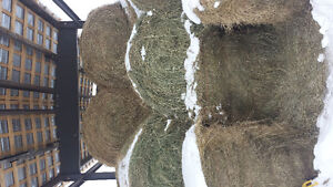 4×5 round bales good for horses and cows.