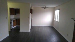 $1100 / 2 Br Renovated Apartment (Chilliwack)