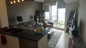 Queens Quay 1-Bdrm Furnished Penthouse