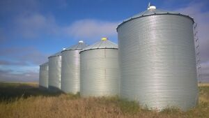 Westeel Grain Bins for Sale