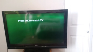 """Sony 42"""" tv"""