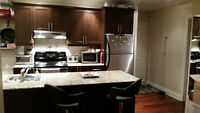 4 1/2 Apartment, Downtown, Centre ville, Montreal