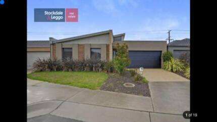 house share in traralgon