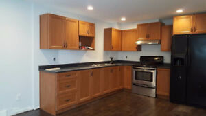 1 bedroom legal basement suite - Langley Willoughby 720sf
