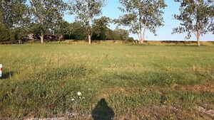 Build your own home on .46 acre lot! Kitchener / Waterloo Kitchener Area image 4