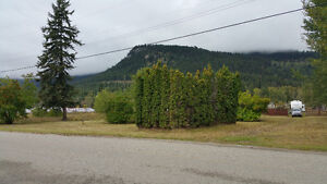 1.39 Acres in Vavenby, BC