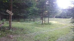 Cleared Lot for sale!! Quebec Residents only!! Gatineau Ottawa / Gatineau Area image 5