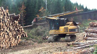 Looking for loggers with class 1 licence