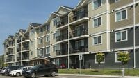 Brand New Apartment - Vanier Heights