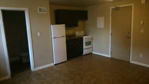 Now Available near HSC - Renovated BACHELOR suite, Incl. Water